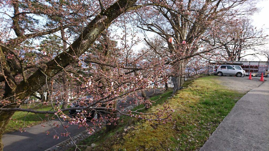 長野散策~桜を求めて編~①